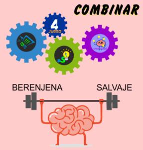 COMBINAR_1